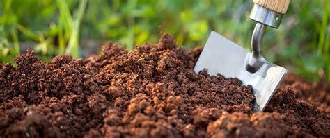 is fertilizer what is fish fertilizer