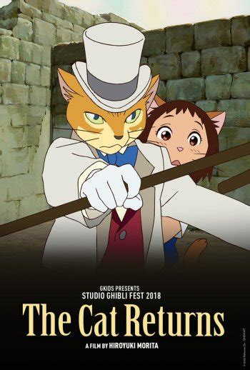 ghibli film the cat returns the cat returns anime planet