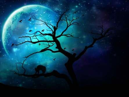 july's love is once in a blue moon ~ june 30, 2015