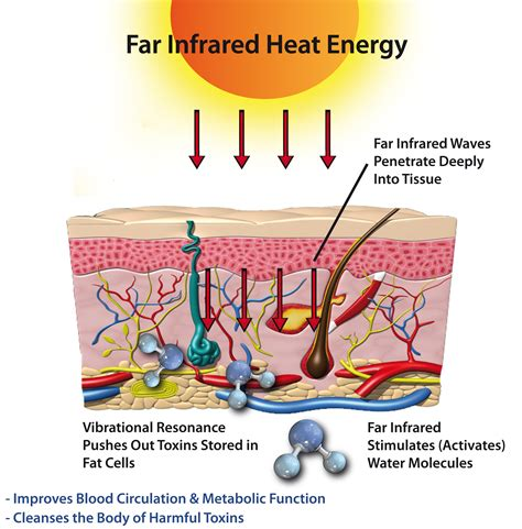 infrared heat l therapy what is far infrared sauna therapy constant fucking