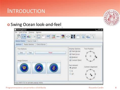 swing look and feel themes java graphics programming