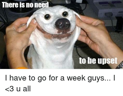 No Need To by There Is No Need To Be Upset I To Go For A Week Guys I