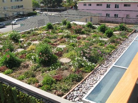 rooftop plants green roof inspection internachi
