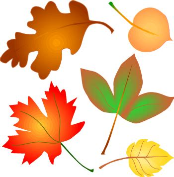 Free Clipart Images Autumn Leaves by Fall Leaves Border Clipart Clipart Panda Free Clipart