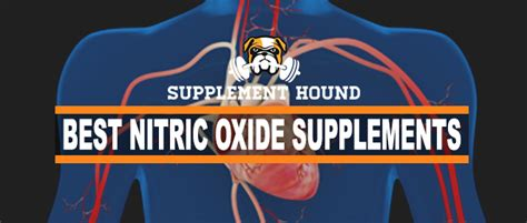 supplement nitric oxide best nitric oxide supplements handy guide and top 10
