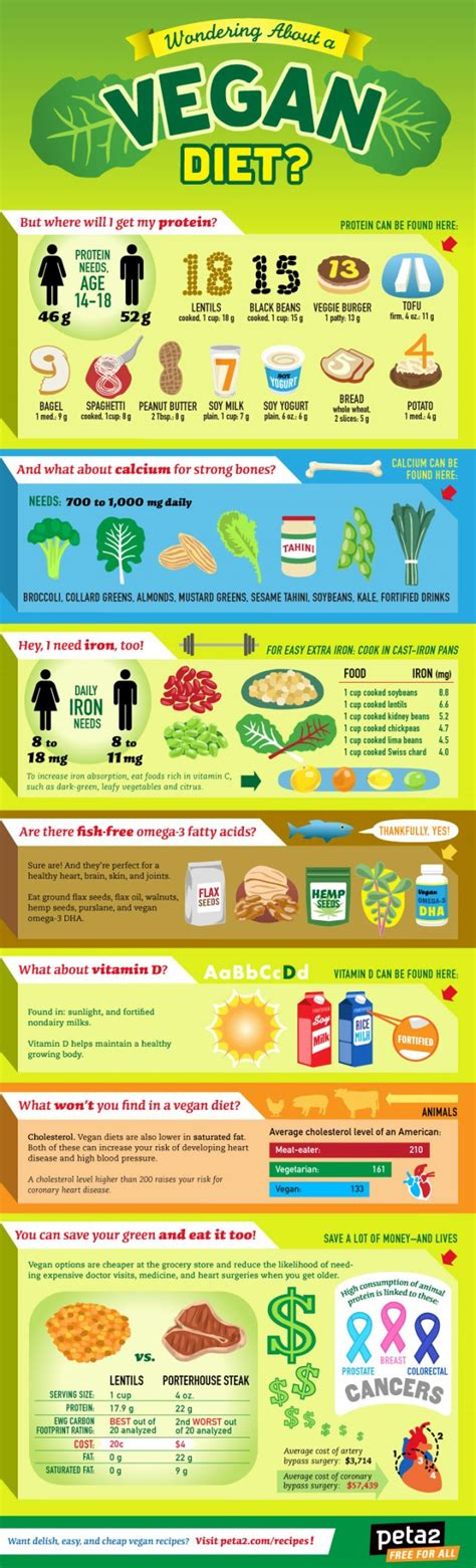 all you need to about a vegan diet daily infographic