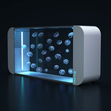 design quallen aquarium quallen aquarium cubic 160 kaufen quallenaquarium net