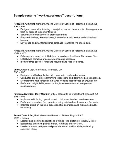 Sample Resume Format Work Experience by Resume Work Experience Examples Berathen Com