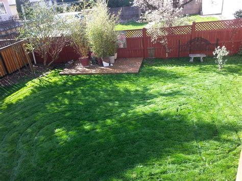 eric s landscaping eric s lawn care garden design saanich