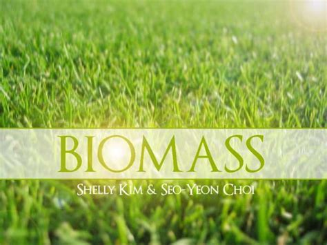 Website Agreement Template biomass energy