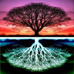 epitome tree of life
