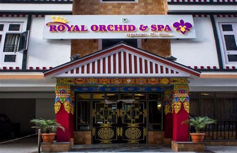 orchid hotel group