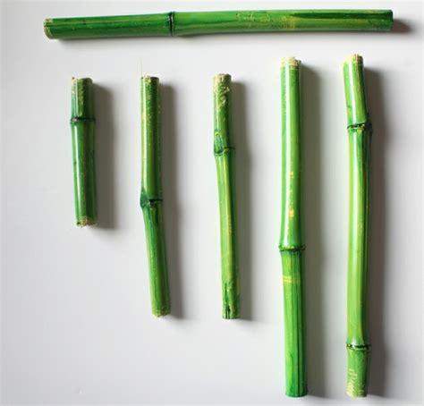 Que Faire Avec Des Bambous Coupés by Que Faire Avec Des Bambous Trouvailles Exotiques En 60