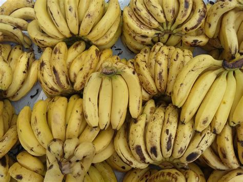 guide to six different types of bananas guide to six different types of bananas
