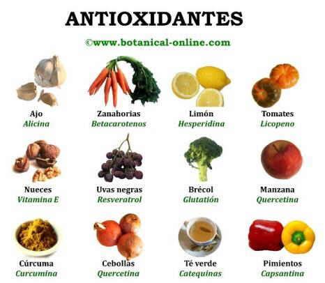 los antioxidantes