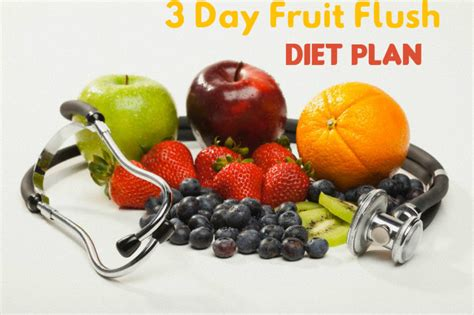 robb fruit flush diet easy weight loss plans for indian and stylish