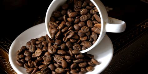 best coffee beans for press who makes the best coffee beans for home brewing