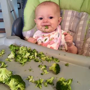 fruit 8 month baby finger foods at 8 months january 2015 babies forums