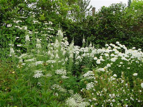 White Cottage Garden Flowers Il Suggestivo Impatto Dell Acqua Nel Giardino