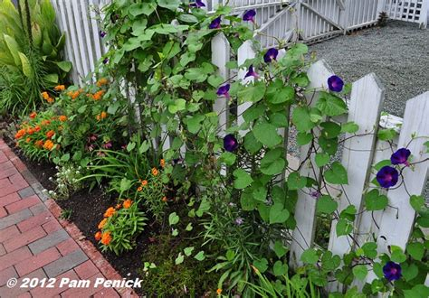 Diy Garden Gates