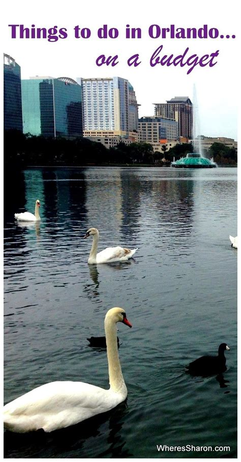 cheap family vacations to orlando florida cheap things to do in orlando with usa and