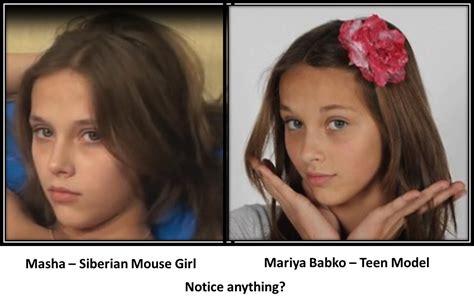 St Sib Rian Mouse Images Usseek Com