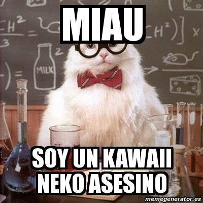 Meme And Neko - meme chemistry cat miau soy un kawaii neko asesino 7611132