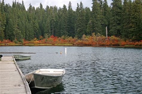 Clear Lake Cabins Oregon by Cing Clear Lake Resort Photo Gallery