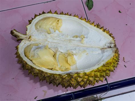 durian kral mezi ovocem ceskozdravecz