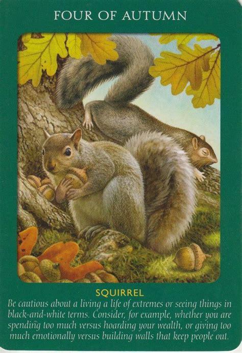 animal tarot cards a doreen virtue radleigh valentine animal tarot cards