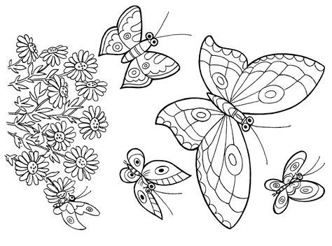imagenes de mariposas para niños dibujos de mariposas para colorear e imprimir prefix