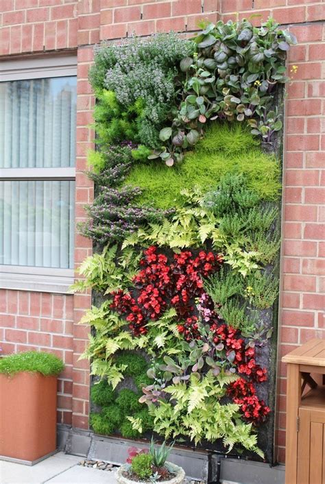 indoor hydroponic wall garden 25 best ideas about living walls on pinterest living