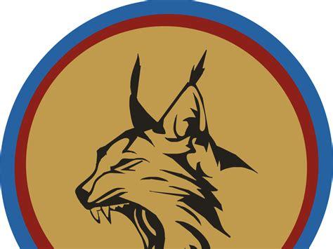 yapacani ya tienen representantes para los 8vos juegos torneo copa lince 2016 fixture e info 8vos de final