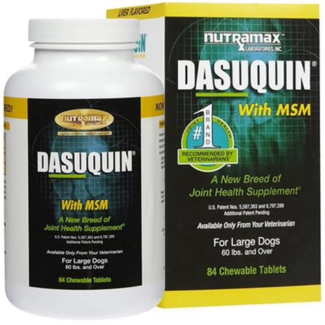 dasuquin with msm for large dogs dasuquin for large dogs 60 lbs with msm 84 chews