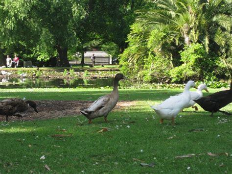 Warrnambool Botanic Gardens Warrnambool Warrnambool Botanic Gardens