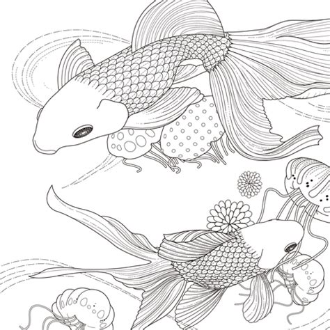 detailed fish coloring pages detailed coloring pages for adults of fish detailed best
