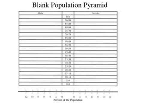 How To Make A Population Pyramid On Paper - ppt blank population pyramid powerpoint presentation