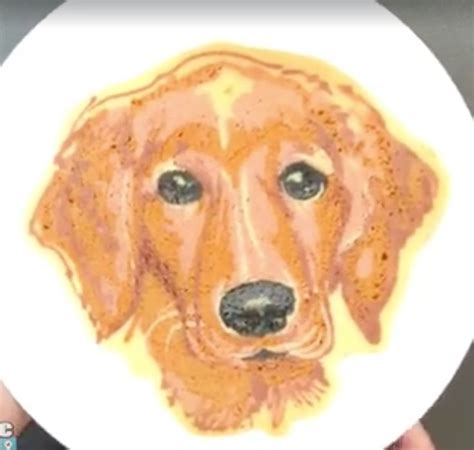 golden retriever fly recipe 1000 images about pancake on stack of pancakes picasso style and