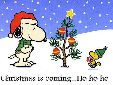 images of christmas is coming 301 moved permanently