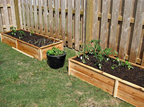cedar raised garden bed plans white ten dollar cedar raised garden beds diy projects