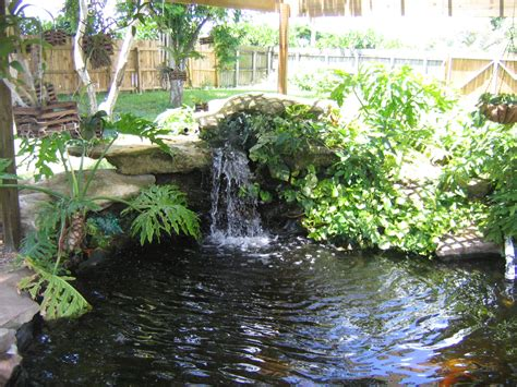 backyard pond pictures simple house designs