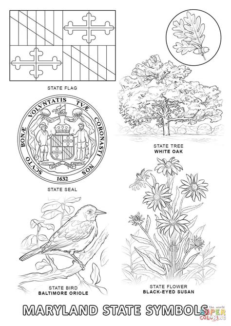 maryland state symbols coloring page free printable