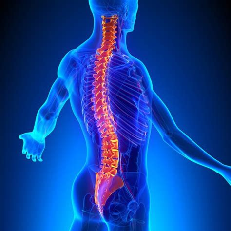 la columna de la enfermedades de la columna vertebral y medidas preventivas