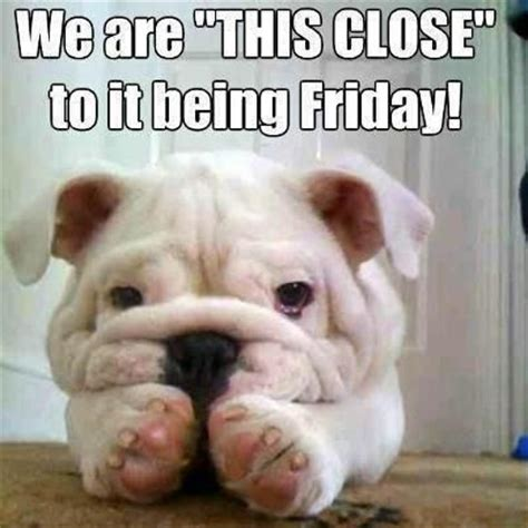 Funny Friday Memes Tumblr - this close to friday funny meme funny memes