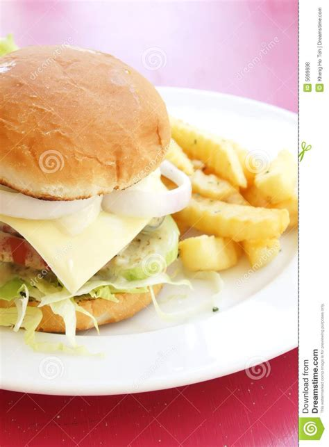 Tofu Sandwich Mr Ho 200gr vegetarian burger with fries royalty free stock photos image 5699698