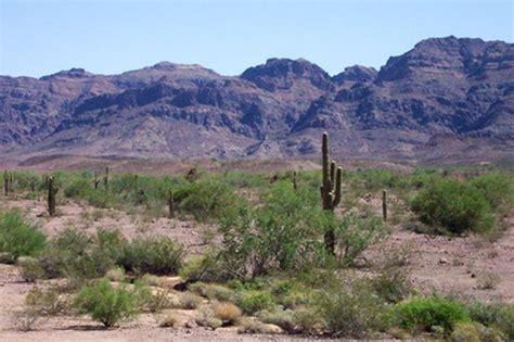 yuma az yuma arizona flickr photo