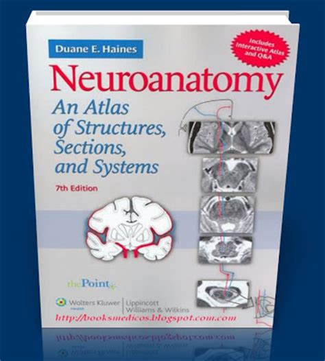 neuroanatomy an atlas of structures sections and systems neuroanatomy an atlas of structures sections and systems