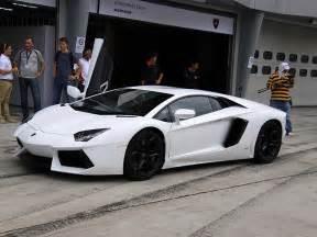White On White Lamborghini Pics For Gt White Lamborghini Aventador