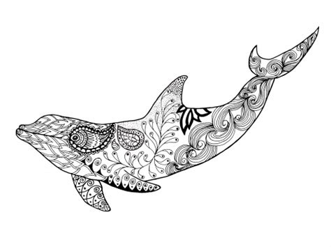coloring pages for adults dolphins dolphin coloring page kidspressmagazine com