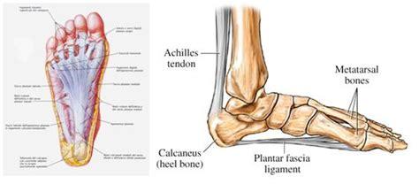dolore al piede parte interna la fascite plantare